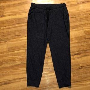 Lululemon 14 Women's XXL Blue Sweatpants